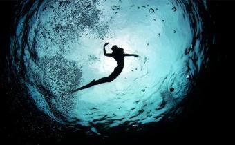 Imagine For A Moment… Freediving At Wakatobi - Freediving UAE