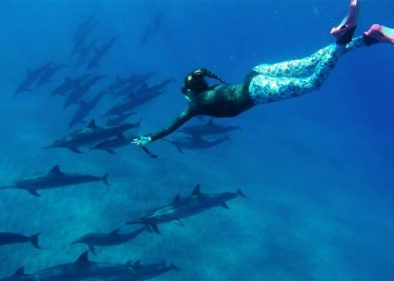Freediving with Dolphins Off Hawaii on World Oceans Day - Freediving UAE