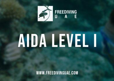 AIDA Level I Freediving Foundation Course - Freediving in United Arab Emirates. Courses, Certificates and Equipment