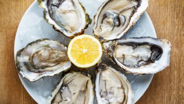 Dibba Bay Oysters — a unique oyster farm