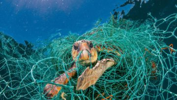 Plastic — a threat to the earth and oceans