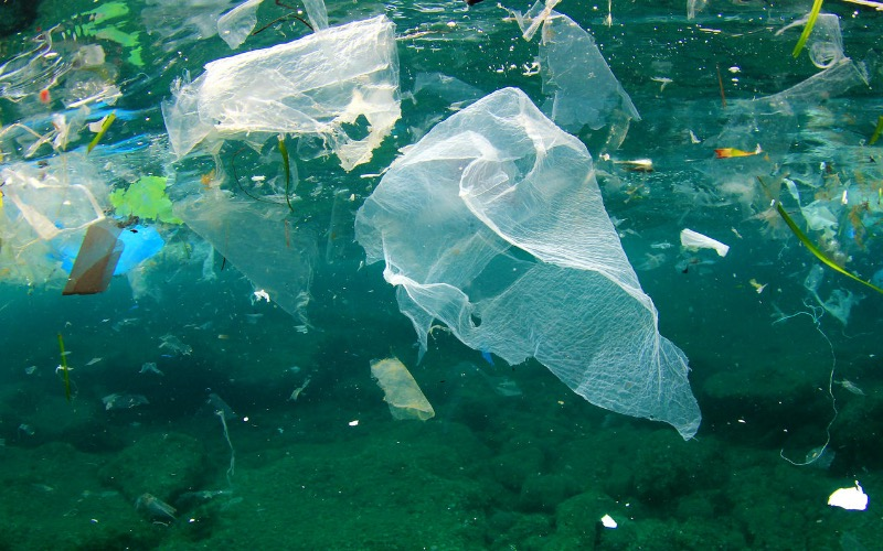 Plastic pollution — ways to solve the problem