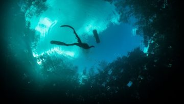 How expensive is Freediving?