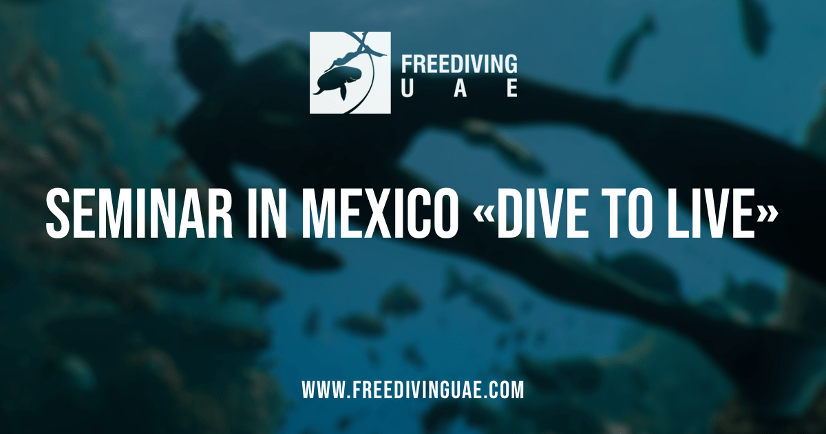 Seminar in Mexico «Dive to live» - Freediving in United Arab Emirates. Courses, Certificates and Equipment