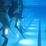 AIDA Level I Freediving Introductory Course